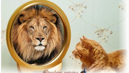 Как стать уверенным в себе и достичь желанной цели. Зеркало поможет